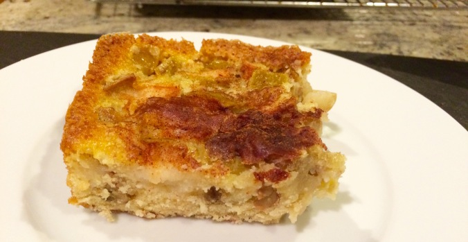 Apple Cake 15