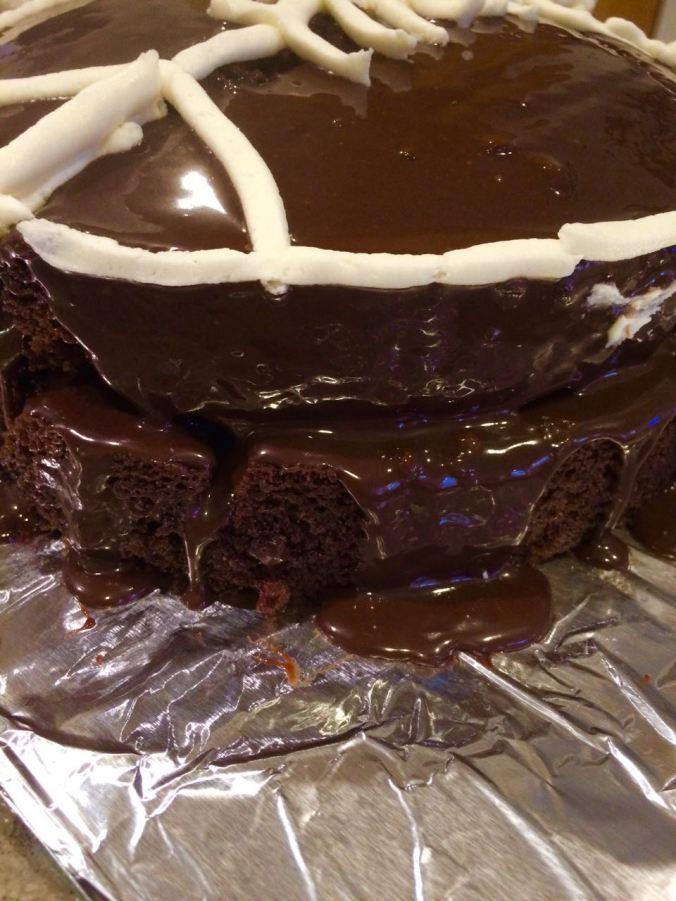 Chocolate Cake 13