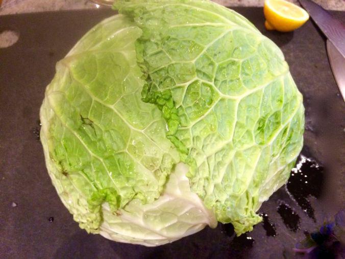 Stuffed cabbage 5